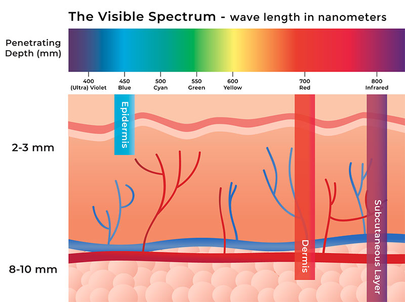 Length and depth of penetration of waves of various colors used in LED light therapy