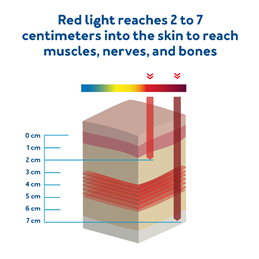 The penetration ability of red and infrared light